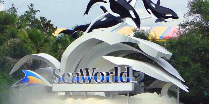 SeaWorld Welcomes Two New Additions to Board of Directors